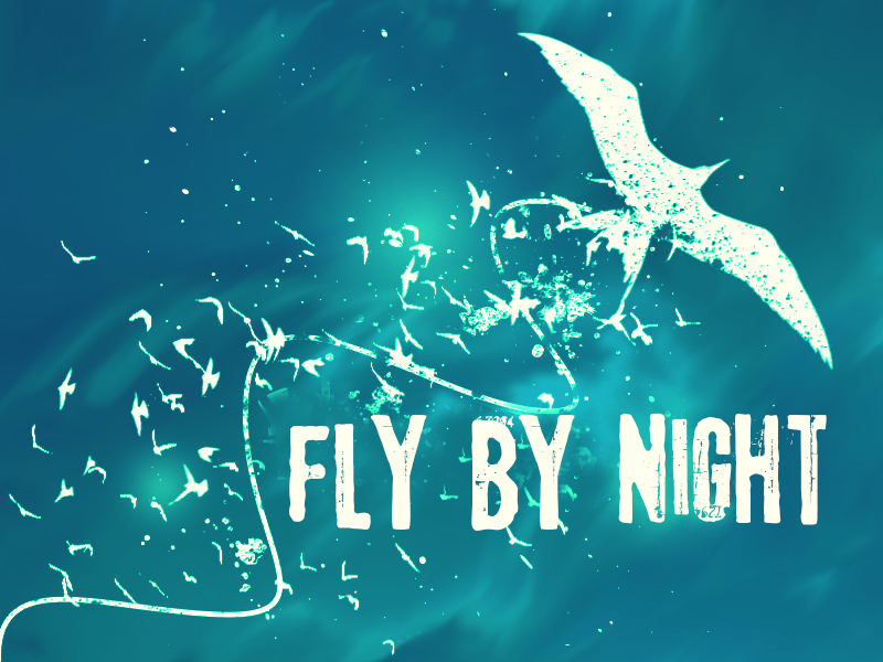 FLY BY NIGHT