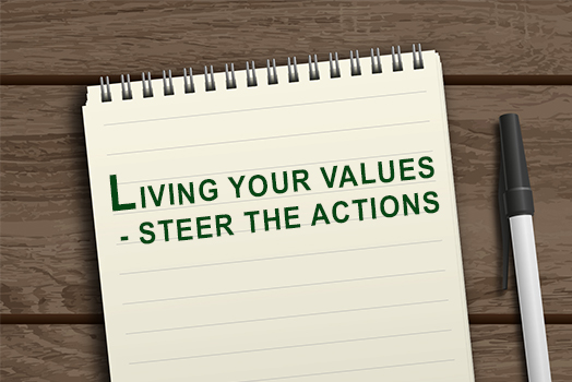 LIVING YOUR VALUES - STEER THE ACTIONS