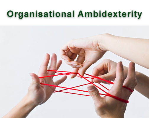 Organisational ambidexterity